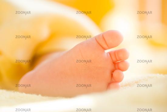 Lovely infant foot.