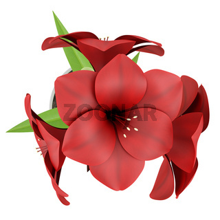 top view of red flower in metallic pot isolated on white background