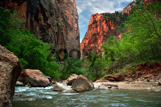River in Zion Canyon