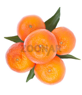fresh juicy oranges with leafs isolated on white background