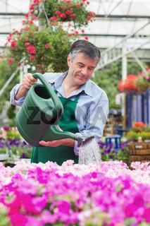 Smiling man watering flowers