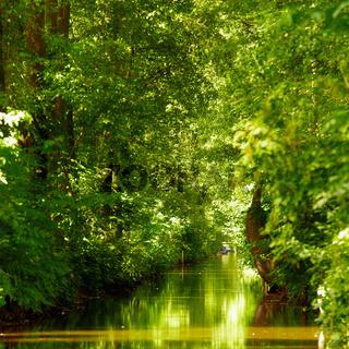 Spreewald Landschaft