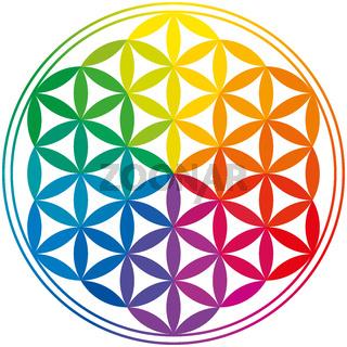 Blume des Lebens Regenbogen Farben