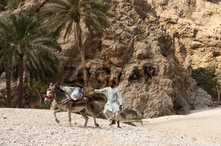 Arabischer Mann rennt hinter seinem entlaufenen Esel her