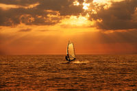 Windsurfer sailing in the sea