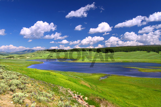Yellowstone River in Hayden Valley