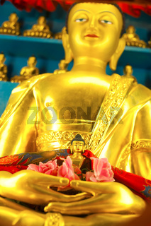 Golden Buddha sculpture in Tibetan Monastery