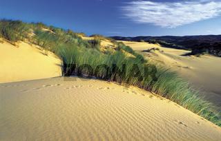Algarve: Dünenlandschaft an der Praia da Bordeira