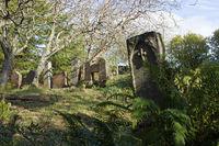 Friedhof auf den Färöerinseln