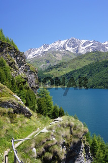 Bergpfad oberhalb des Silsersees