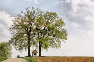 Die Kapelle am Strassenrand