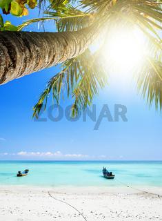 Tropical beach, vertical composition