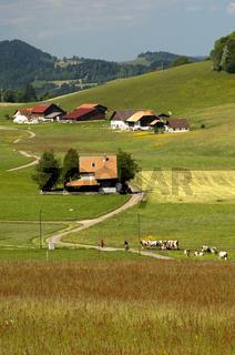 Abgelegene Bauernhäuser im Schweizer Jura