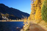 Herbststimmung am Lej da Segl