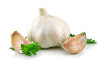 Garlic Vegetable with Parsley Leaves Isolated on White