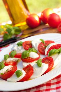 caprese salad on white plate