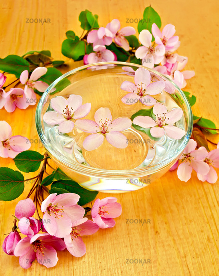 Apple blossom in a cup of water