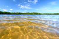 Northwoods Swimming Beach