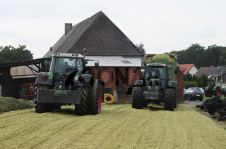 Maisernte für Biogas und Tierfütterung