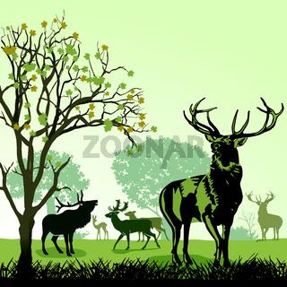 Hirsche und Wild im Herbst.eps