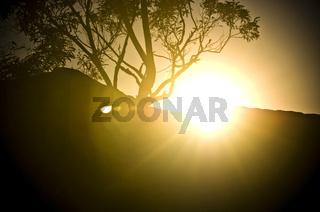 Sunset Flare