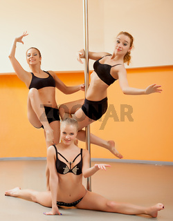 Group of young women posing in pole dance