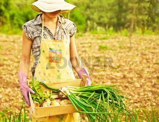 Happy gardener working
