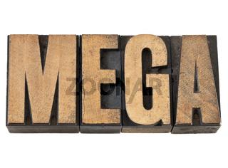 mega word in wood type