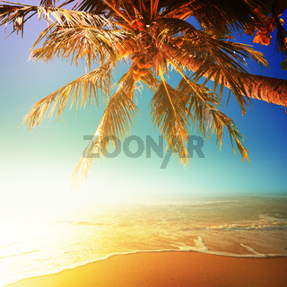 Sunny beach. Square composition.