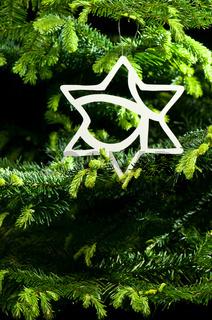Weihnachtsbaumdekoration in Form eines Stern