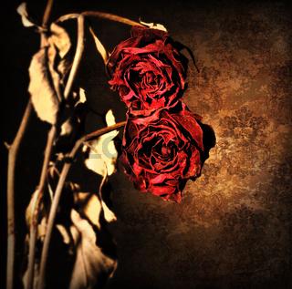 Grunge wilted roses border
