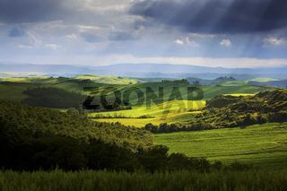 Crete Landschaft bei Mucigliani, Toscana, Italy