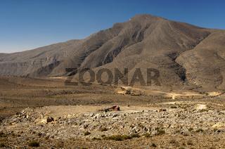 Hochebene in den Bergen von Musandam