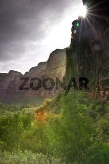 Mystical Zion Canyon
