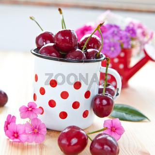 Frische Kirschen in kleiner Tasse