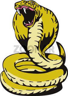 Cobra Viper Snake
