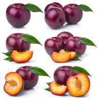 Set of ripe purple plum fruits isolated