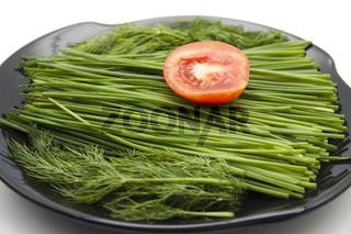 Schnittlauch und Dill mit Tomate