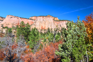 Zion National Park Geology