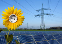 Solarpark, Sonnenblume mit Steckdose und Stromtrasse