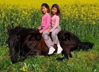 twins and horse laid down