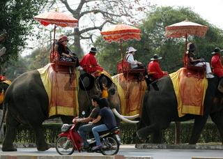 Ein Elephanten Taxi vor einem der vielen Tempel in der Tempelstadt Ayutthaya noerdlich von Bangkok in Thailand.