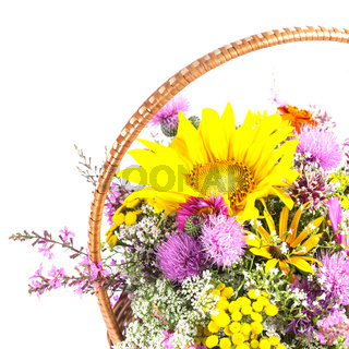 Bouquet of wild flowers