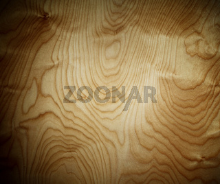 grunge vein wood panel