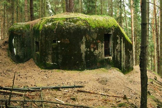 Foto Tschechischer Bunker Im Wald 3 Schöberlinie Bild 3467864