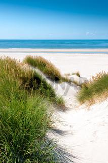 Nordsee - Dünenlandschaft auf Amrum