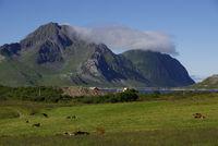 Berg mit Wolken auf den Lofoten