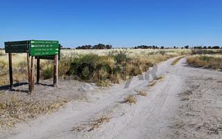 Landschaft der Central Kalahari Game Reserve, CKGR,  Botswana, landscape in Central Kalahari Game Reserve, Botsuana