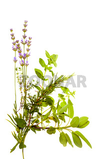 Bunch of herbs on white