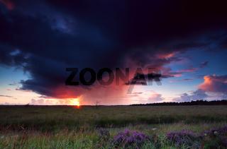 dramatic thunderstorm over heathland